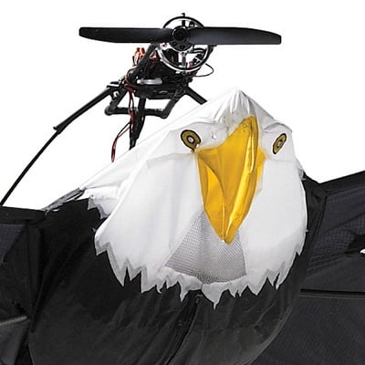 The 9 12 Foot Remote Controlled Bald Eagle 1