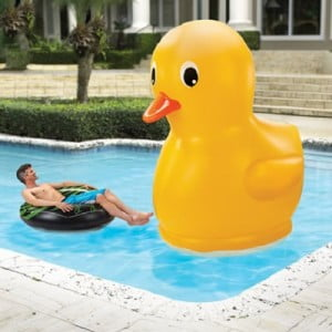 The Giant Rubber Duckie