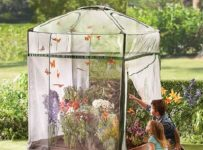 The Monarch Butterfly Attracting Sanctuary