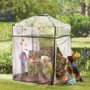 The Monarch Butterfly Attracting Sanctuary - A uniquely designed greenhouse that creates a backyard paradise for monarch butterflies