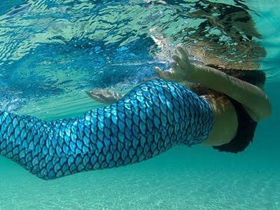 The Mermaid Converter 1