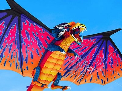 The 10 Foot Dragon Kite 1