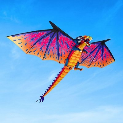 The-10-Foot-Dragon-Kite