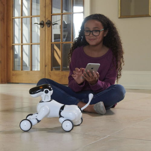 Voice Controlled Robodog