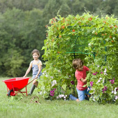 Childrens-Growing-Garden-Fort